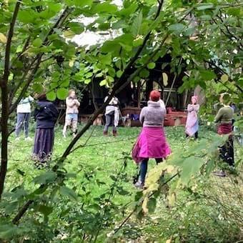 WomenWell in the Wild Qigong Day Retreat @ Ashlyn Woods | Cambridge | England | United Kingdom