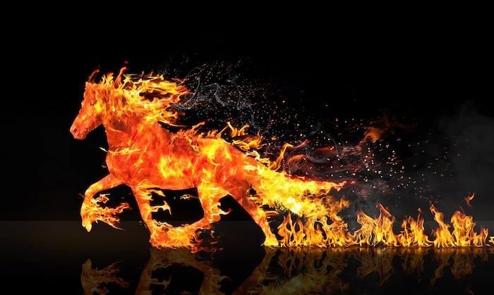 Fire Horse 1966
