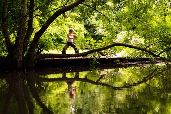 Online Yoga and Qigong Classes